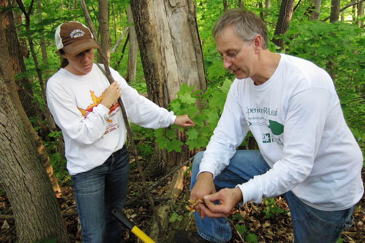 Marty points out the features needed to identify a mushroom to Jana.