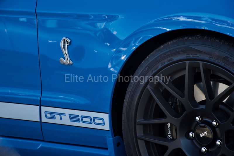 Ford Shelby GT500 SVT Decal