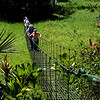 Swing bridge over swamp; Puerto Limon, Costa Rica; Bucuare Jungle Haven