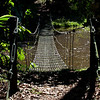 Swing bridge over water; Puerto Limon, Costa Rica; Bucuare Jungle Haven