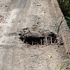 Note this hole in the surface of the bridge.  My driver drove right over it,,,,next photo. <br /> <br /> Puerto Limon, Costa Rica;