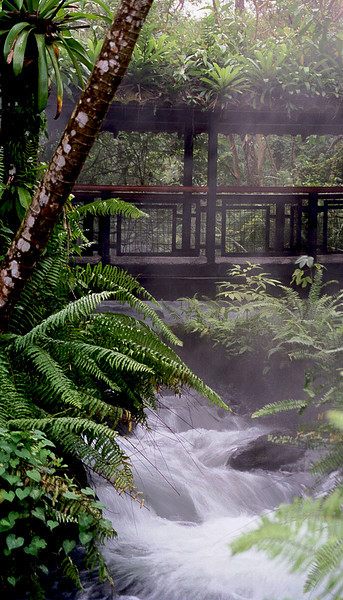 Tabacon, Costa Rica  Arenal Hot Springs