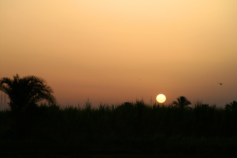 Sunrise in the Nile Valley