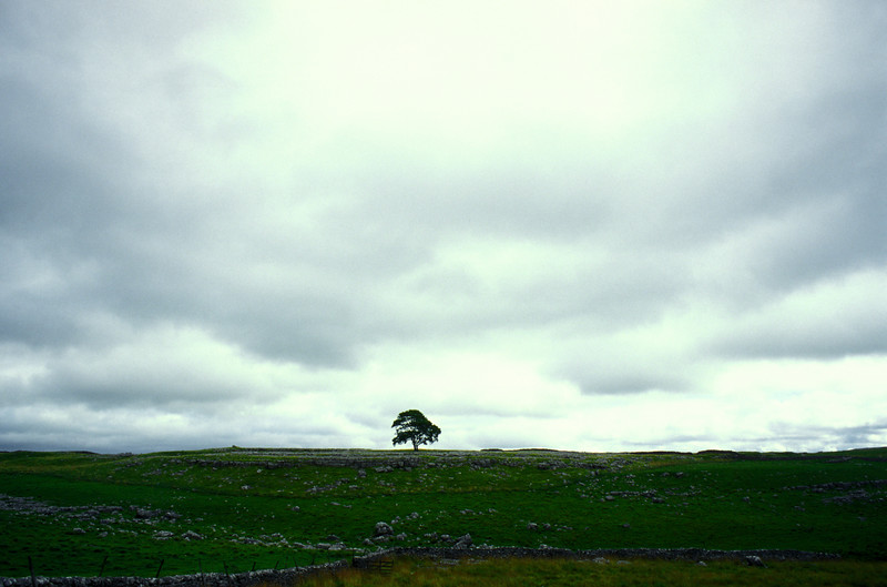Yorkshire Dales - It can feel lonely at times.
