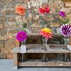 Sissinghurst - Flowers.