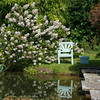Chartwell - Winston's chair beside Golden Orfe Pond.
