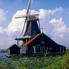I think Holland
