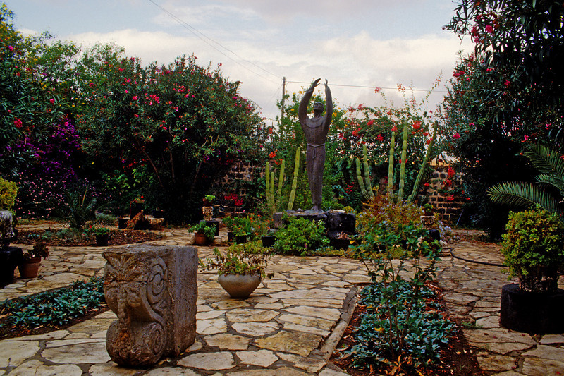Garden in the area