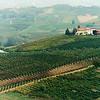Hillside near Barolo