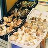 Mushrooms in Alba