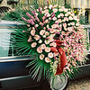 Alba, funeral hearse with flowers