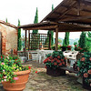 Farm house Tuscany San Gimignano back yard of farm house.Casanova di Pescille