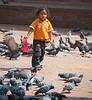 Kathmandu - Feeding the birds.