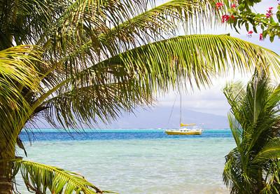 yellow sailboat Moorea South pacific French Polynesia
