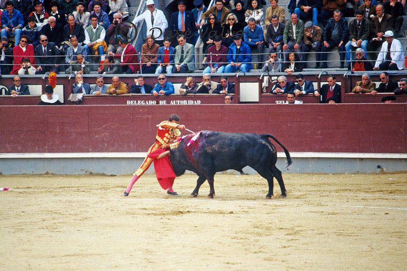 Bull fight in Madrid. The matador received oh' Lays for this feat.