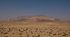 Desert Landscape on the way to Palmyra.