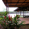 Looking out onto the Tortuguero River from  Mawamba Lodge
