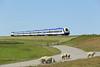 DE2700-07 (on rear), Hindenburgdamm 14/7/2015<br /> NOB81741 1252 Westerland-Hamburg Altona