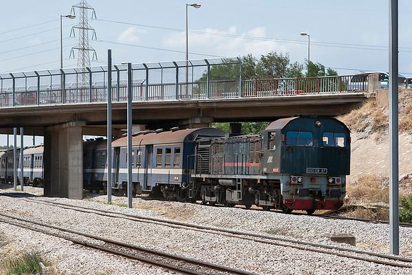 040-DK-97 Lychee Rades 3/8/2010 167 1225 Tunis Ville-Erriadh