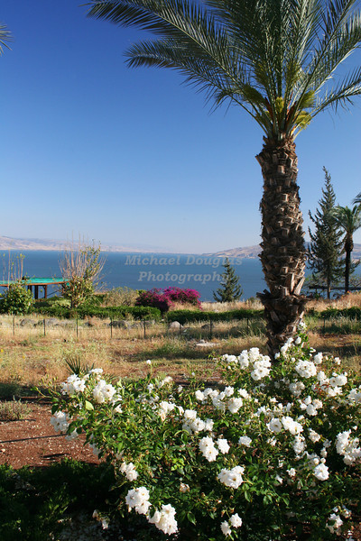 The Sea of Galilee as seen from the the Mount of Beatitudes, Israel.