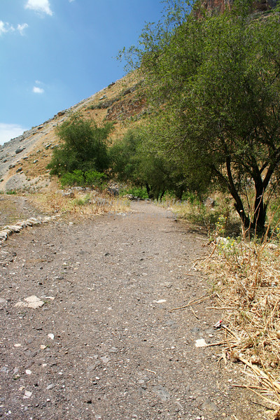 Old road to Galilee in Israel.