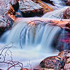 20100327_Forest Falls_0221