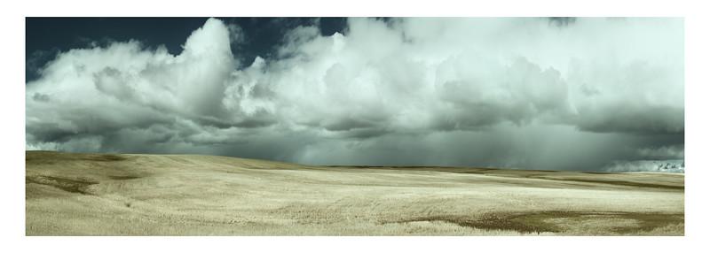 A Brewing Storm