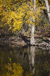 002_29OctoberTheRiver_05_Photo-by-Johnny-Nevin