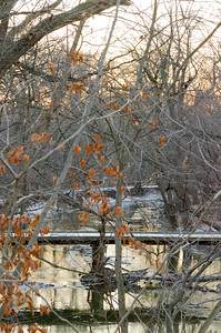 012_Winter Bridge _02_Photo-by-Johnny-Nevin