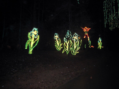 Fantasy In Lights Tour