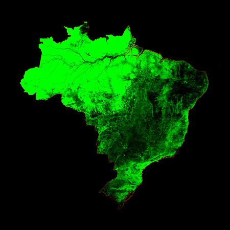 Forest cover map of Brazil
