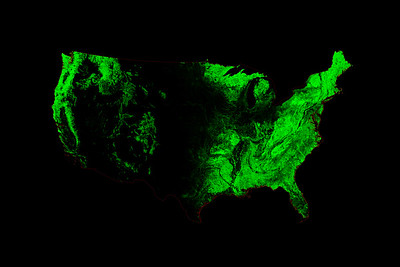 Forest cover map of the contiguous United States