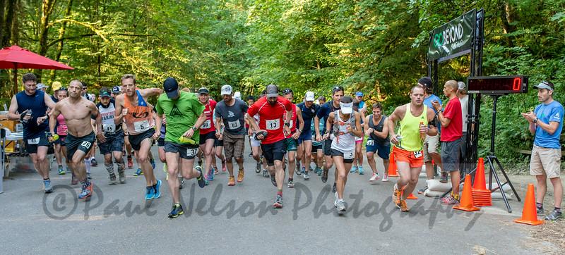 Forest Park Marathon