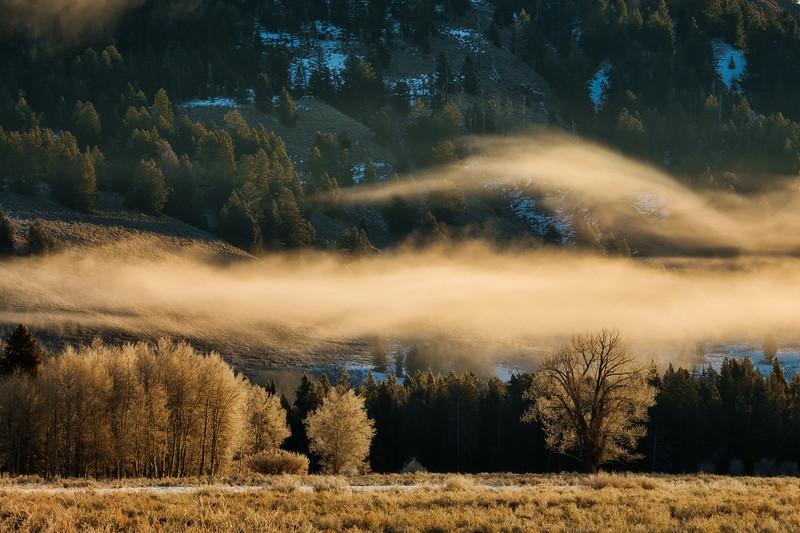 Fog Flip