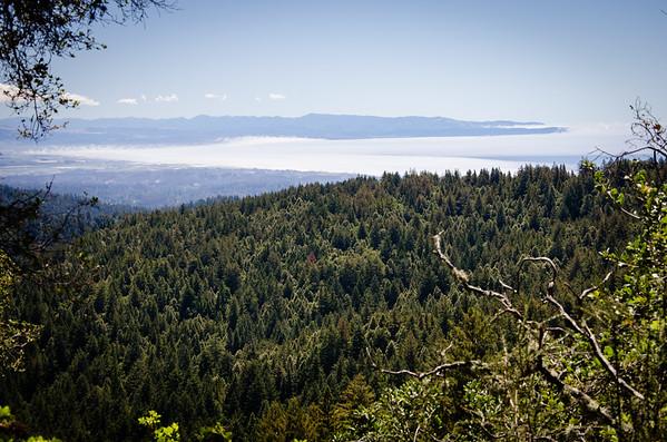 Forest of Nisene Marks State Park; california; santa cruz Great view of the Monterey Bay coast.