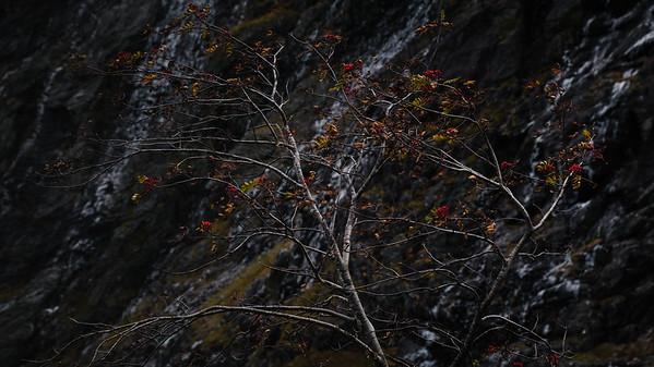 Autumn in Romsdal