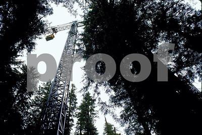 Canopy crane 2