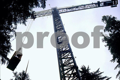 Canopy crane 5