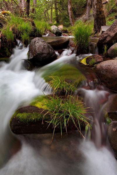 ~ Quiet Stream ~  Big Canyon Creek