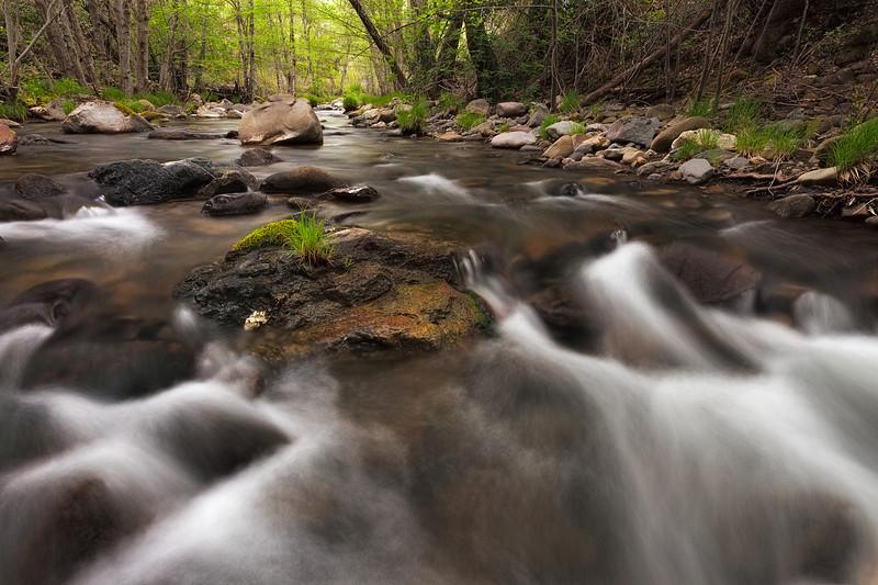 ~ Creek Diving ~  Big Canyon Creek