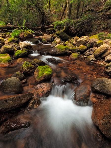 ~ Troutdale Creek II ~