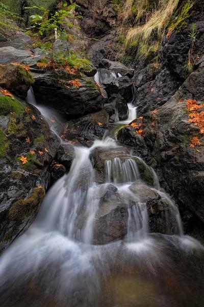 ~ Soft Veil ~  Anderson Creek