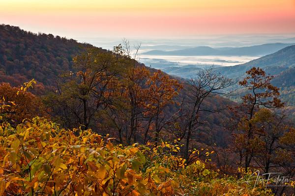 Shenandoah Valley at Dawn