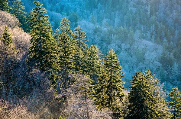 Blue Mountain Side