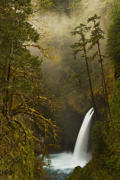 Metlako Falls - Varina Patel