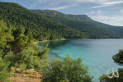 von Pinien dominierter mediterraner Wald an der Küste, Dalmatien, Kroatien