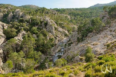 Felslandschaft mit Pinienwald nahe Wasserfall Piscia di Ghjaddu, L´Ospedale, Korsika, Frankreich
