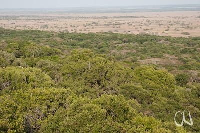 Greater St. Lucia Wetland Park, iSimangaliso-Wetland-Park, Nationalpark, national park, KwaZulu-Natal,Südafrika, South Africa
