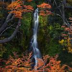 """""""Water Fall"""""""
