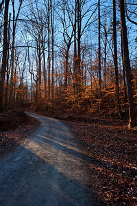 Path ahead